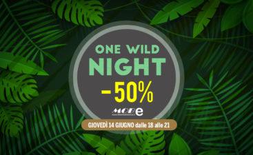 One-Wild-Night-banner
