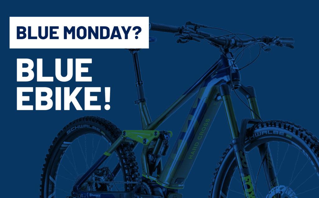 Blue monday blue ebike bici elettrica bologna