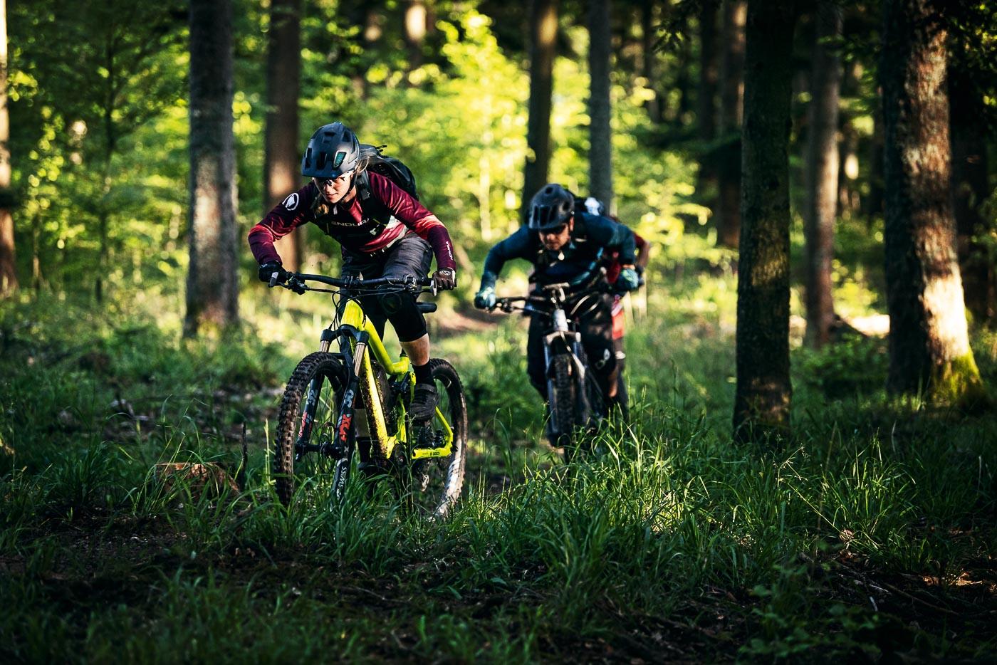 nuovo motore bosch performance line cx 2020 ebike mobe bici elettriche copertina domande e risposte 2