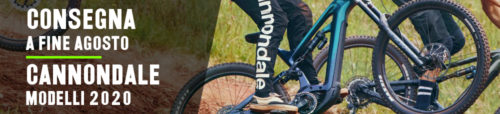 consegna cannondale ebike 2020 banner