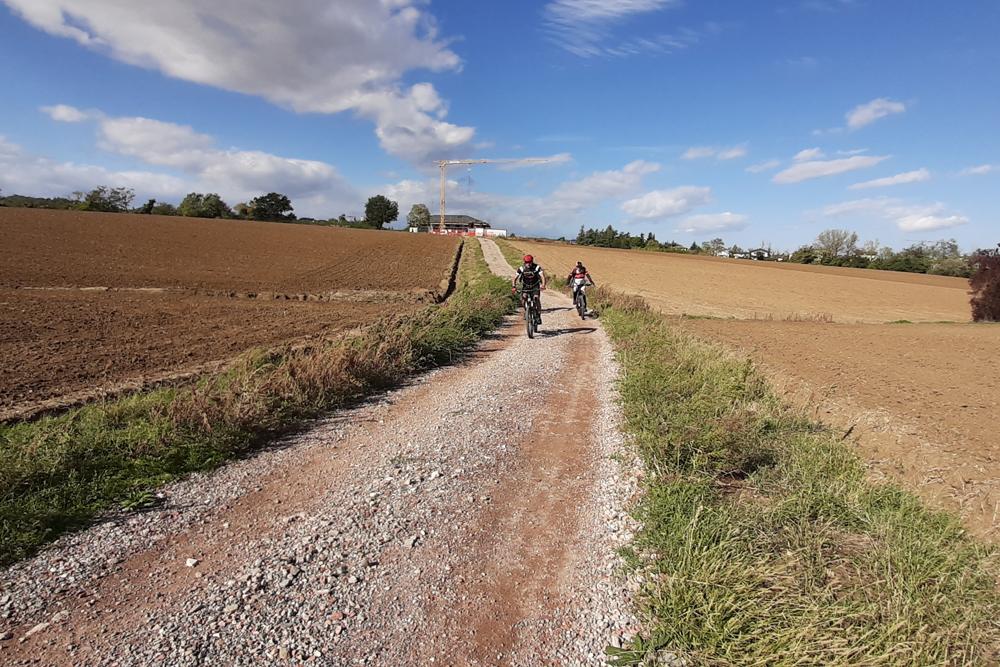 Mobe tour ebike bologna dozza bici elettrica 3